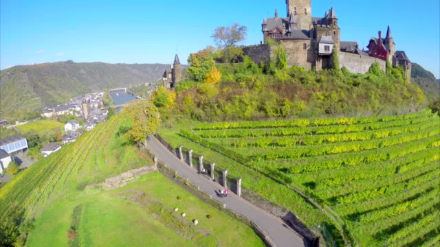 Fairy castle in green valley, vine hills, river bridges village. Beautiful aerial shot above Europe, culture and landscapes, camera pan dolly in the air. Drone flying above European land. Traveling sightseeing, tourist views of Germany. video