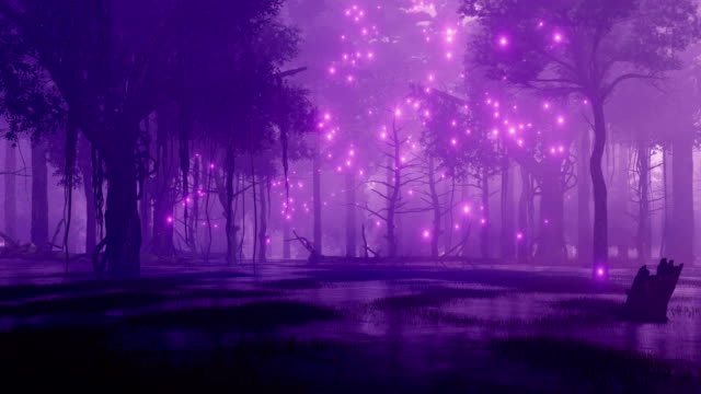 Fairy firefly lights in marshy night forest video