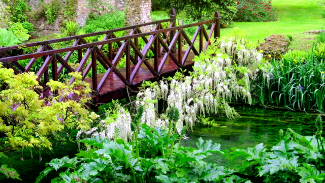 fairy tale bridge vivid green river wooden full of flowers in 4k ornamental garden fairy tale bridge vivid green river wooden full of flowers in 4k ornamental garden ornamental garden stock videos & royalty-free footage