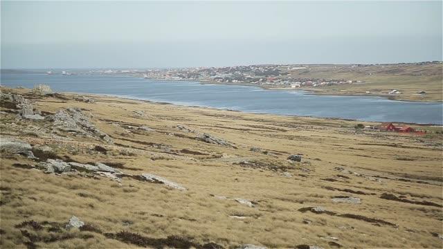 falkland islands, east falkland, stanley (aka port stanley). - sud est video stock e b–roll