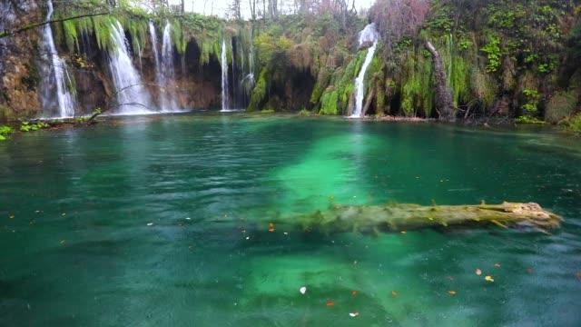 falla och klart vatten i sjön. hösten skogen i nationalparken plitvice, kroatien. - flod vatten brygga bildbanksvideor och videomaterial från bakom kulisserna