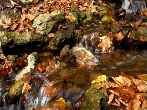 jesień jesień wody 01 - długość klipa filmów i materiałów b-roll