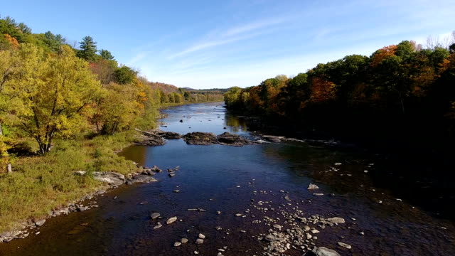 Fall colors along river video