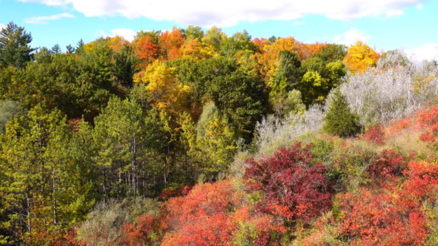 Fall Colors in Rouge Valley