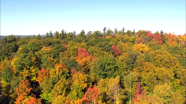 Fall Colors Near Greenville  - Aerial View - Massachusetts,  Franklin County,  United States video