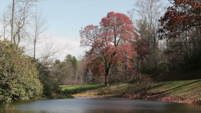 Fall lake in the Blue Ridge Mountains, Virginia, USA video