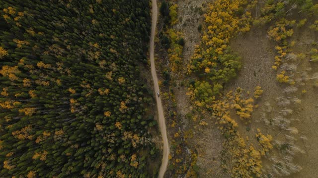vídeos de stock, filmes e b-roll de imagens aéreas do drone fall mountain 4k - aspen colorado