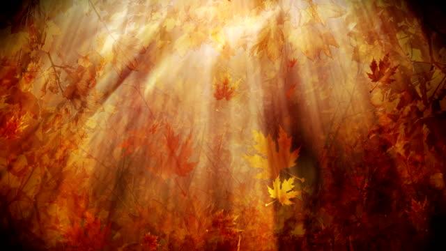 Fall Season Background Loop