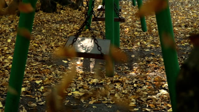 Fallen leaves and swing in autumn