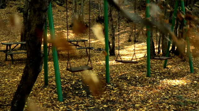 Fallen leaves and swings in autumn Tracking Shot- Fallen leaves and empty swings in forest // HD 1920x1080 / 29.97p / Photo-JPEG / Slowmotion b roll stock videos & royalty-free footage