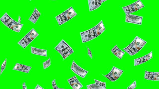 fallande 100 dollar - valuta bildbanksvideor och videomaterial från bakom kulisserna