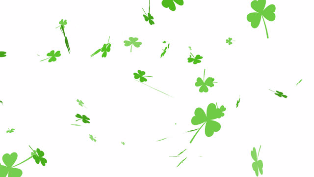 Falling Clover Leaves Isolated on White Background Shamrocks Leaf Fall Animation. Falling Clover Leaves Isolated on White Background shamrock stock videos & royalty-free footage