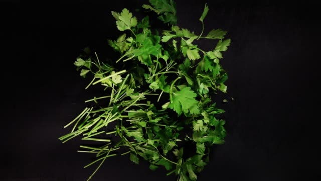 Falling fresh parsley on a black board and slices . Slow motion Fresh parsley on a black board. parsley stock videos & royalty-free footage