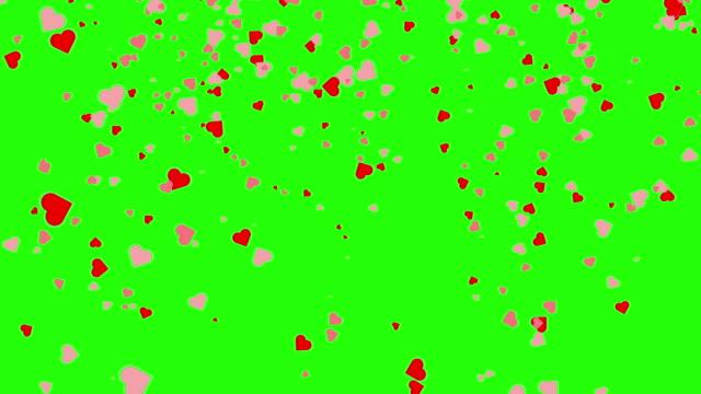 vidéos et rushes de coeur tombant sur un fond vert d'écran. concept de jour de valentine - coeur
