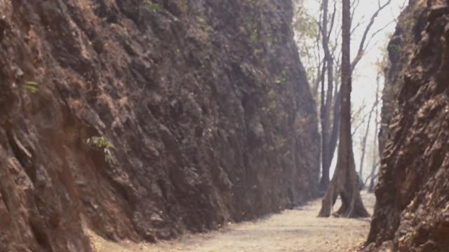 falling leaves slow motion in Hellfire pass rock moutain and tourist video