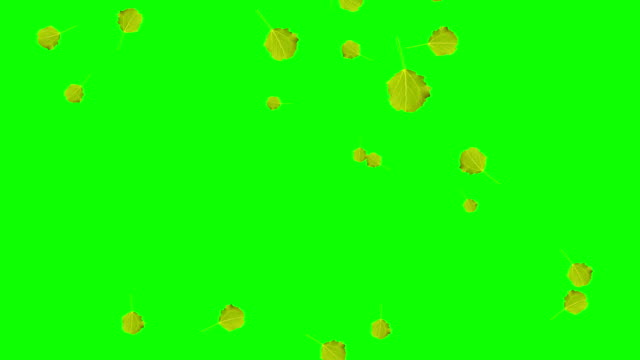 Falling leaves Animation of falling green leaves. Autum video on the green screen. Full HD resolution. green leaf stock videos & royalty-free footage
