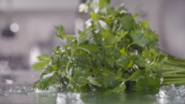 Falling of parsley into the wet table. Slow motion 240 fps falling of parsley into the wet table parsley stock videos & royalty-free footage