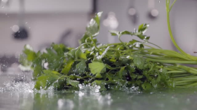 Falling of parsley into the wet table. Slow motion 480 fps falling of parsley into the wet table parsley stock videos & royalty-free footage