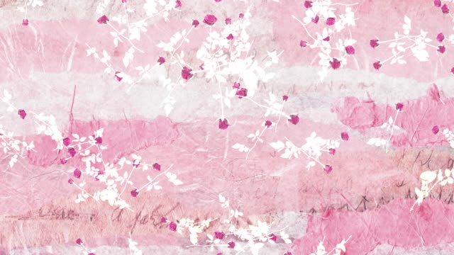 Falling roses on pink torn paper. Looping romance background video