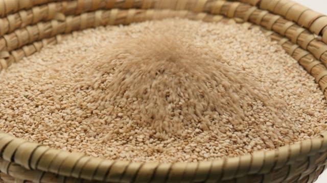 caduta di semi di sesamo sul cesto - sesamo video stock e b–roll