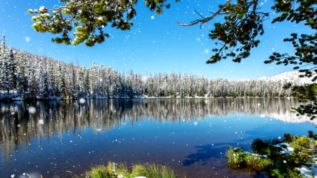 Falling snow on clear mountain lake video