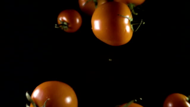 falling tomato on a isolate on black background falling tomato on a isolate on black background. close up competition group stock videos & royalty-free footage