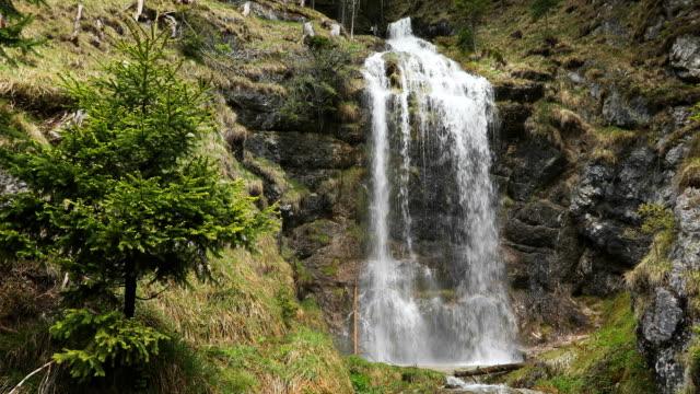 falling waterfall - stato federato del tirolo video stock e b–roll