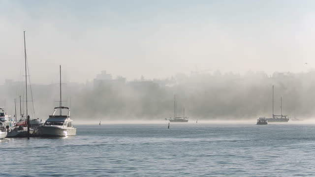 False Creek Winter Mist, Vancouver video