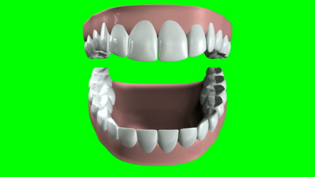 falso denti apertura e la chiusura - bocca video stock e b–roll