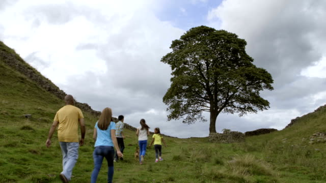 Family at Sycamore Gap video