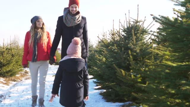 family choosing a christmas tree - jodła filmów i materiałów b-roll