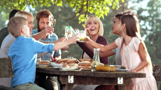 Family clinking glasses at the picnic table on a sunny day video