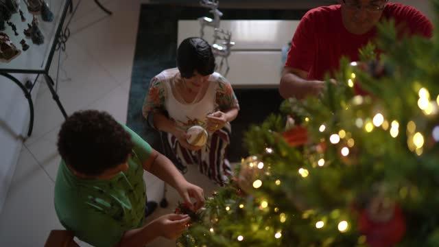 クリスマスツリーを飾る家族 - disabilitycollection点の映像素材/bロール