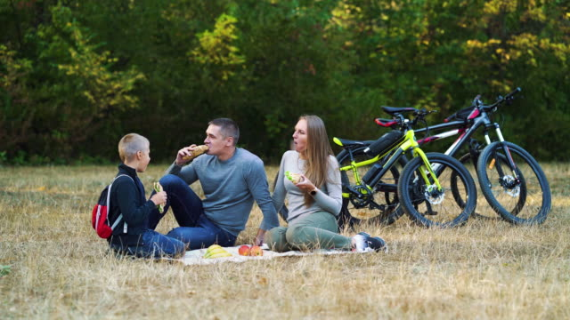 Family eating sandwiches at picnic in forest video