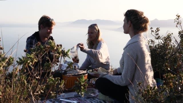 家族は、海抜ピクニック ディナーをお楽しみください。 - ピクニック点の映像素材/bロール