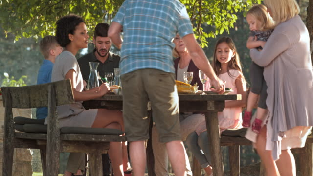 Family enjoying a nice barbecue under a tree in sunshine video