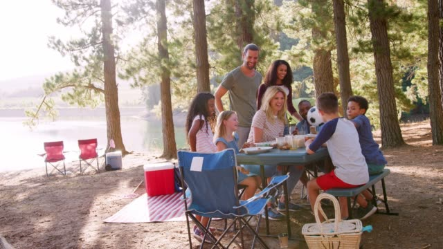family enjoys picnic as they camp by lake with friends - picnic stock videos and b-roll footage