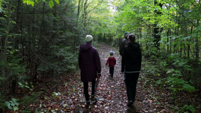 Family Exploring Forest on Hiking Trail in Autumn
