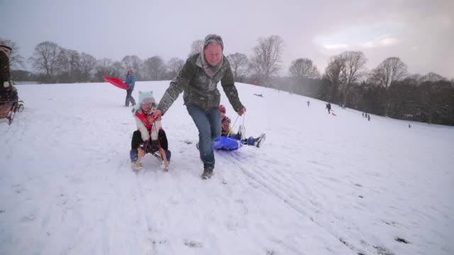 雪の中での家族の楽しみ ビデオ