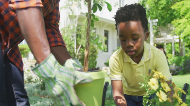 Family gardening together Front view of a happy African American couple and their young son in the garden, while the mother watches smiling, slow motion horticulture stock videos & royalty-free footage
