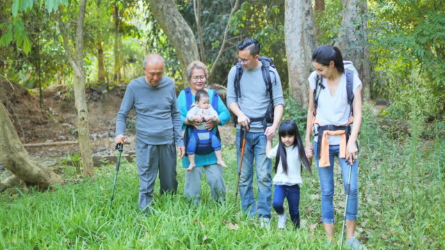 family, happiness, generation, vacation and people concept - Multi generation family hiking in a forest, family, happiness, generation, vacation and people concept - Multi generation family hiking in a forest, picnic stock videos & royalty-free footage