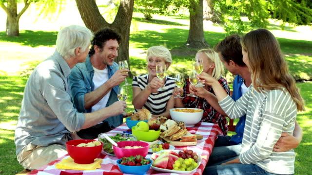 ご家族でのピクニックが - ピクニック点の映像素材/bロール