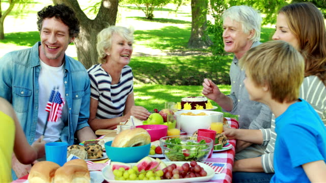 Family having picnic and holding american flag video