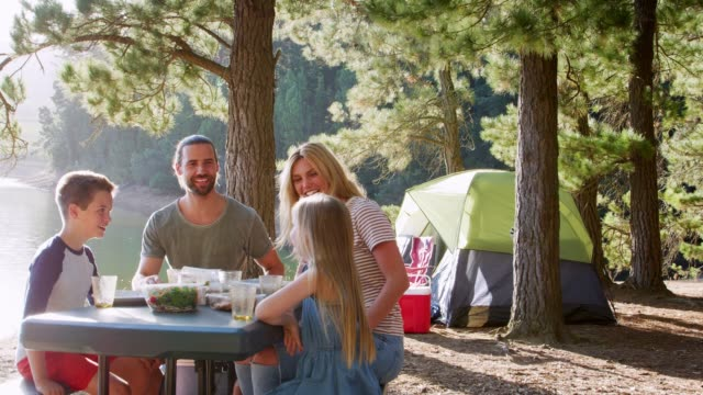 family having picnic as they camp by lake on adventure in forest - picnic stock videos and b-roll footage