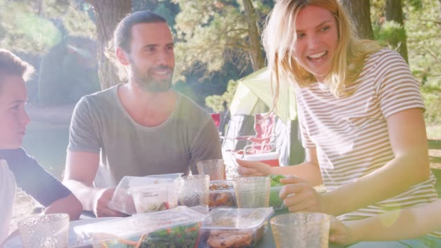 彼らは森での冒険の湖でキャンプ、ピクニックを持っている家族 - キャンプ点の映像素材/bロール