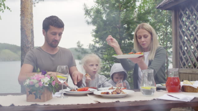 Family Having Picnic on Nice Summer Day - vídeo
