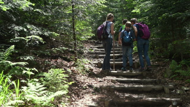Family hiking in beautiful mountain forest