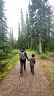 istock Family Hiking on Rainy Day, Jasper, Canada 1281520819