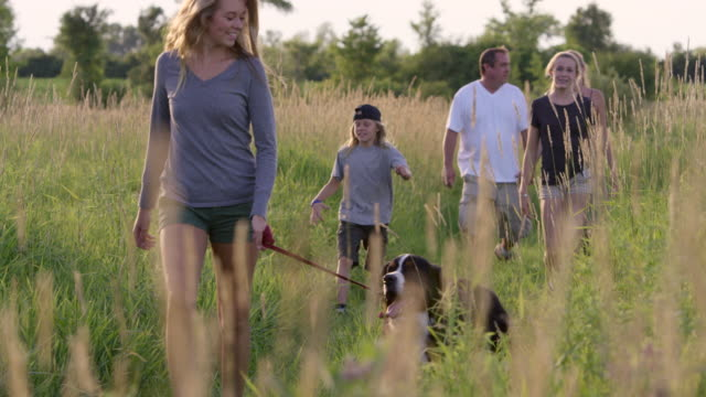 family hiking with dog - trekking video stock e b–roll