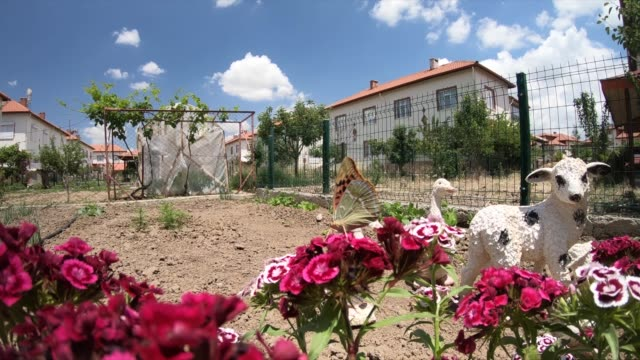 春の花、ドリーの動きを持つ家族の家 - 花壇点の映像素材/bロール